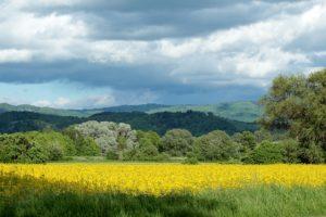 hessen mit schönen landschaften